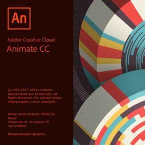Adobe installation in chennai